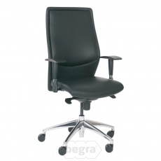 Berne manager-fauteuil