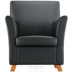 Lion fauteuil Half leather