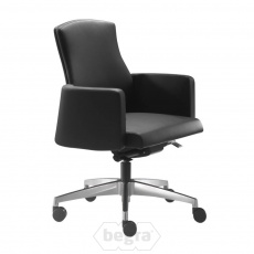 Style manager-fauteuil